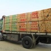 Eldahman CO For Importing & Exporting Wood